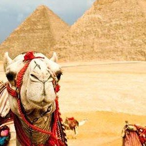 El Cairo