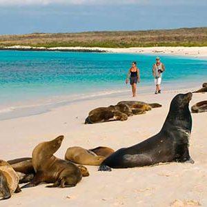 Tour Islas Galapagos